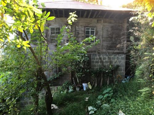 Baba Ocağı ön görünüş Ketenli Köyü Rize 2020-09-27 at 16.07.28